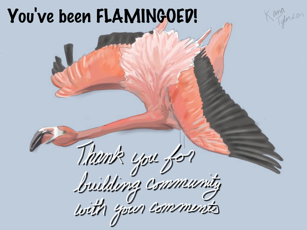 flamingo KanaTyler