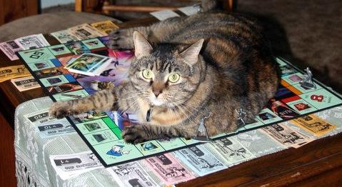 cat Monopoly