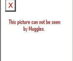 Muggle error