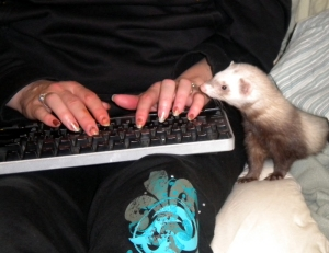"""freelance writing... with more """"help"""""""