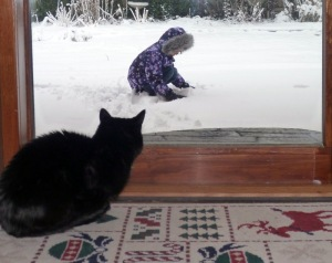 my parents' cat, Mila, watching Elena Grace play in the snow