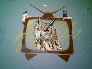 owl TV