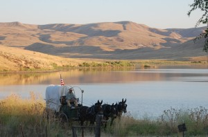 covered wagon Owyhee Rinker Buck