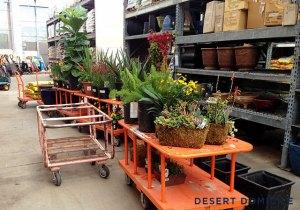 Home Depot plant cart