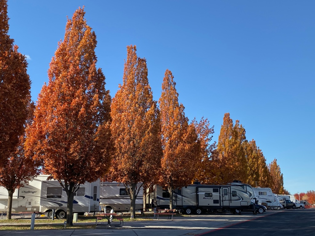 RV park autumn leaves